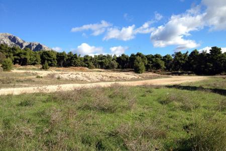 Αχαρνές έκταση 25.000 τ.μ προς πώληση