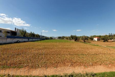 Θριάσιο βιομηχανικό οικόπεδο 7.500 τ.μ προς πώληση